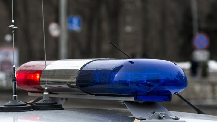Очевидцы: пьяный водитель «Рено» ударил сотрудника ГИБДД