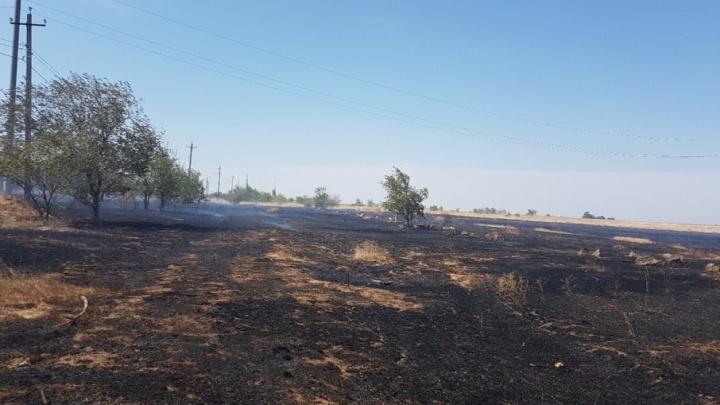 Пожары в Советском районе Волгограда и Городище локализованы