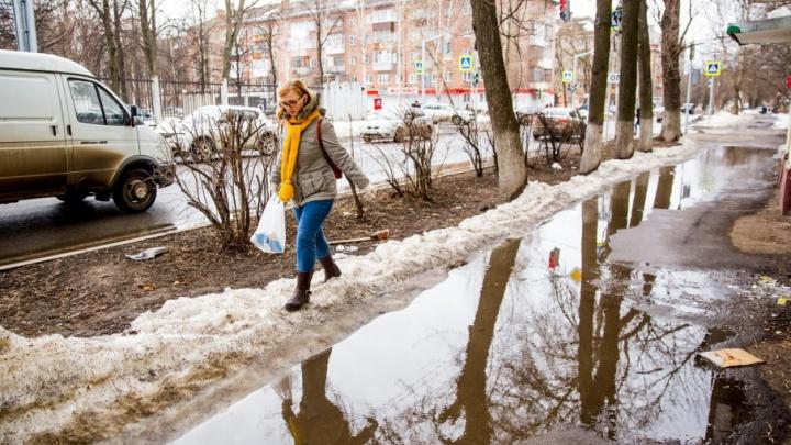 Пусть дворники руками мусор собирают: Владимир Слепцов потребовал очистить Ярославль