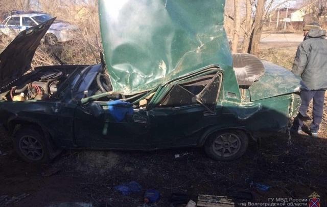 В Волгограде 19-летний водитель чудом выжил, врезавшись в дерево