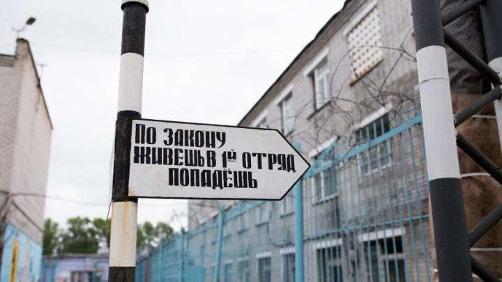 В Ярославле откроют филиал «Руси сидящей»