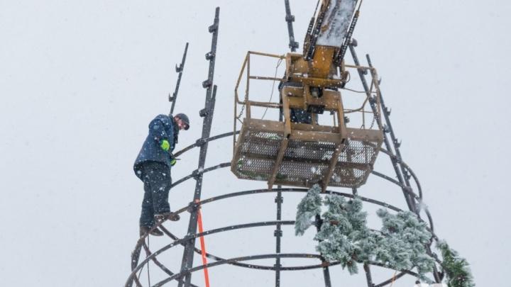 До следующего года: на площади Куйбышева разобрали главную городскую елку