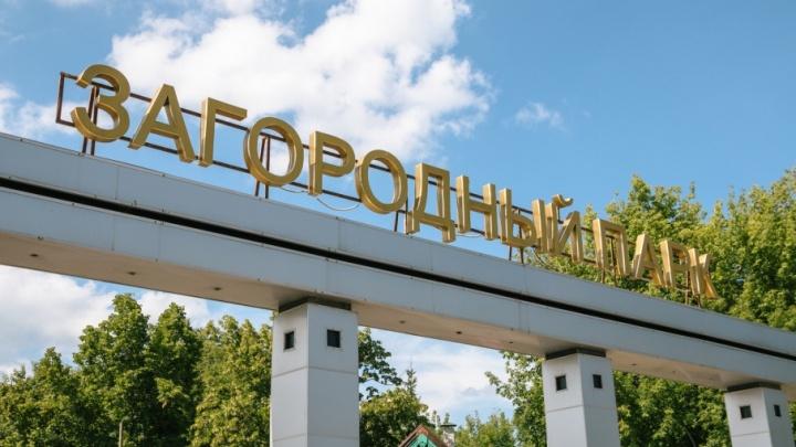 В Самаре объявят конкурс на лучший дизайн-проект Загородного парка