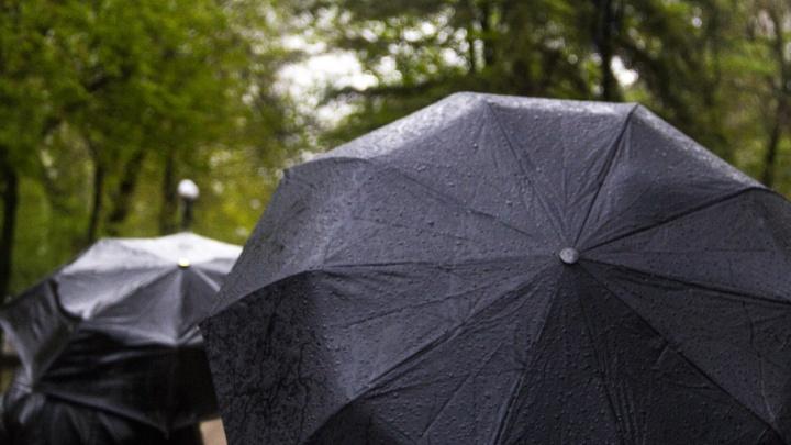 Циклон принесет в Ростов дожди и грозы