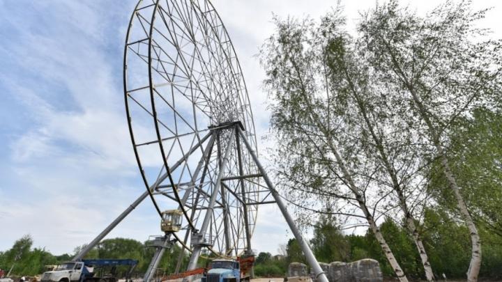 Ярославцев бесплатно прокатят на колесе обозрения. Но не всех