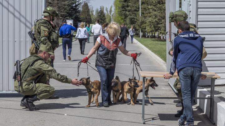 В Волгограде мотострелковая бригада на день открыла двери бывшего Качинского училища