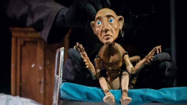 Золушка и Кафка: в Пермском театре кукол рассказали о предстоящем сезоне