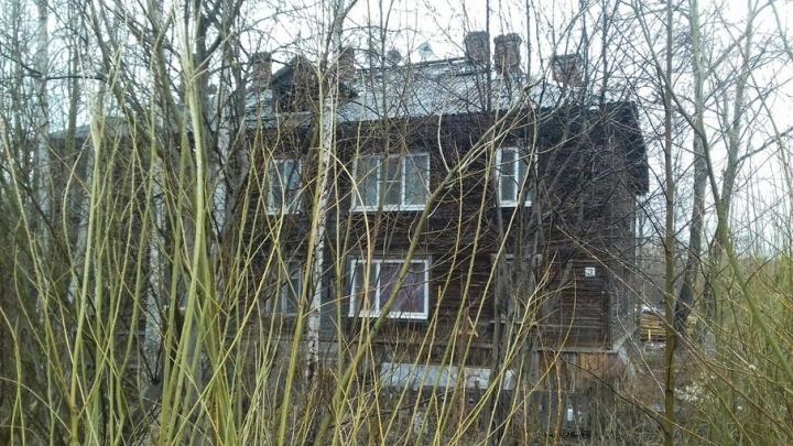 Жители деревяшек на улице Осипенко поневоле оказались захватчиками чужой земли
