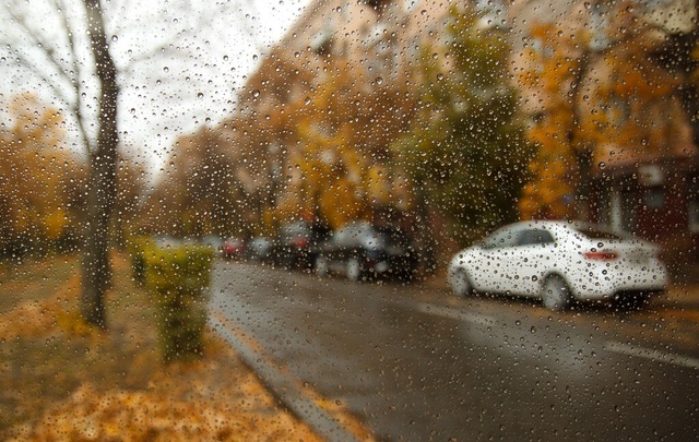 На смену дождю в Волгограде придут тепло и солнце