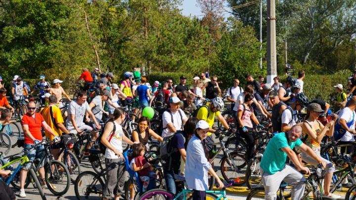 Традиционный велопарад в Волгограде впервые стартует из двух точек