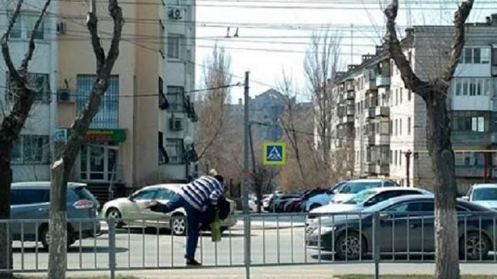 Волгоградцы пятый месяц бросаются под машины на стертом переходе в центре города