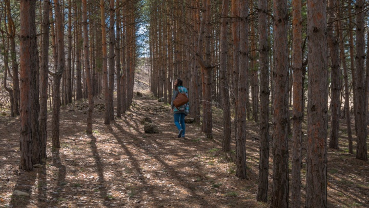 Под Сызранью спасатели нашли заблудившихся в лесу 22-летнюю девушку и ее двухлетнего сына