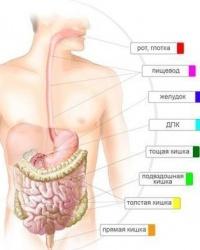 Ростовский НИИ онкологии проверит ваш желудок