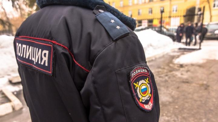 Привлекут кинологов: в Самаре на Новый год усилят меры безопасности