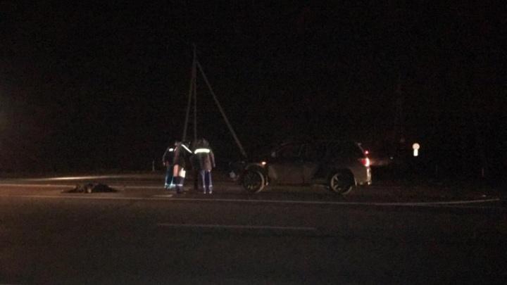 Перебегал трассу в темноте: 82-летний мужчина погиб под колесами внедорожника «Тойота» на М-5