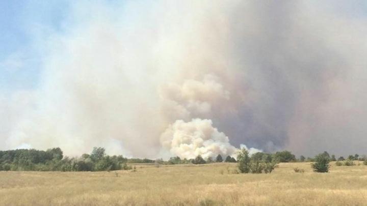 Режим ЧС ввели из-за пожара в лесу в Усть-Донецком районе