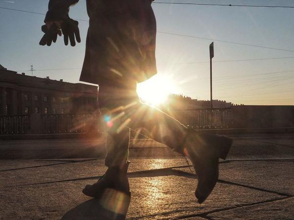 январь 2020 / автор фото Михаил Огнев/«Фонтанка.ру»