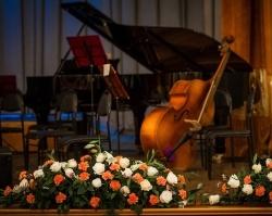 Мост в Кельн, безумные танцы и новые имена: три популярных концерта под Новый год