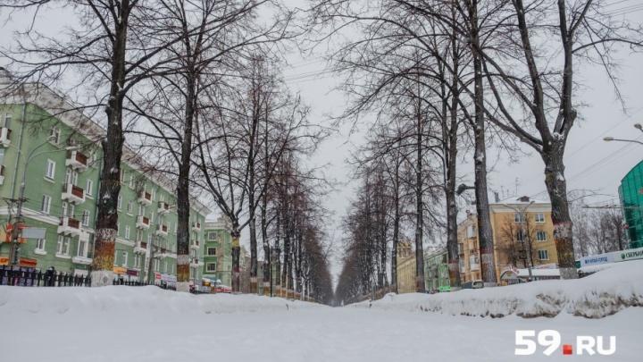 «Будет последняя морозная ночь»: в Прикамье идет потепление