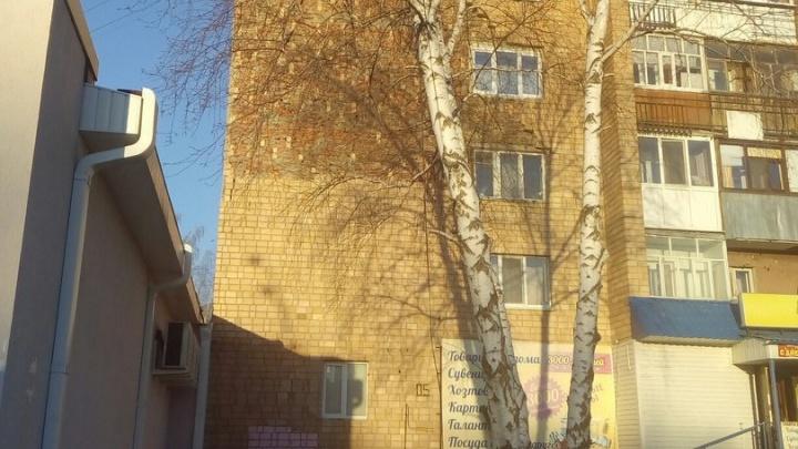 В девятиэтажке рядом с тюменским Нефтегазом обрушилась кирпичная облицовка