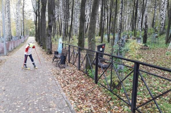 Лыжники продолжают тренироваться на кладбищах и дорогах