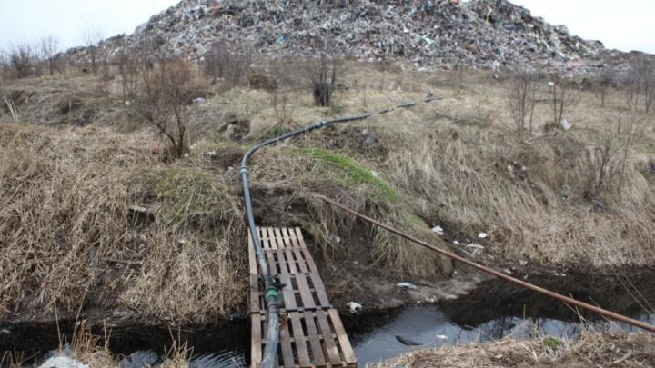 С полигона «Скоково» и ближайшей реки Норы взяли пробы почвы и воды