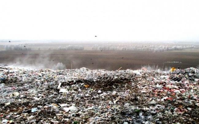 Депутаты спросили губернатора прямо: повезут ли в Ярославскую область мусор из Подмосковья?