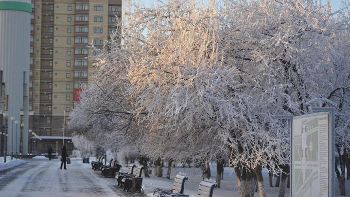 Почти зима: какая погода ждёт тюменцев в выходные