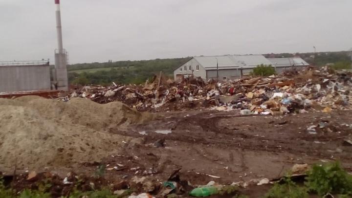 Две ростовские компании оштрафуют за мусор