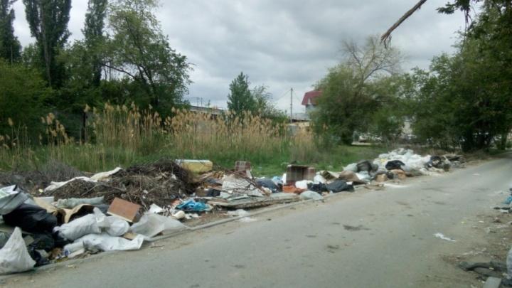 В Кировском районе Волгограда больше месяца не могут разобрать свалку у жилых домов