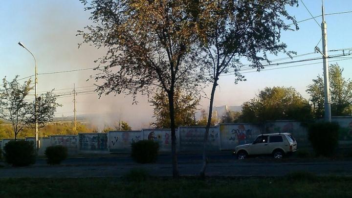 Пожар рядом с дендрологическим садом ВНИАЛМИ потушен в Волгограде