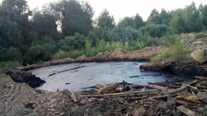 В ярославском селе нашли нефтяное озеро