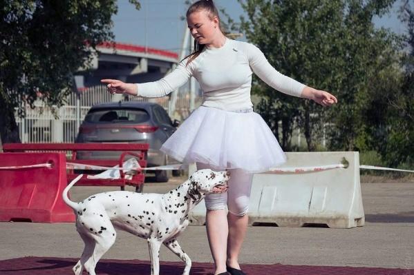 Собака должна показать высокий уровень взаимодействия с проводником