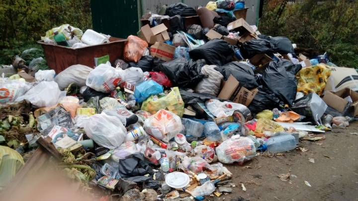В ярославском посёлке после выборов перестали вывозить мусор