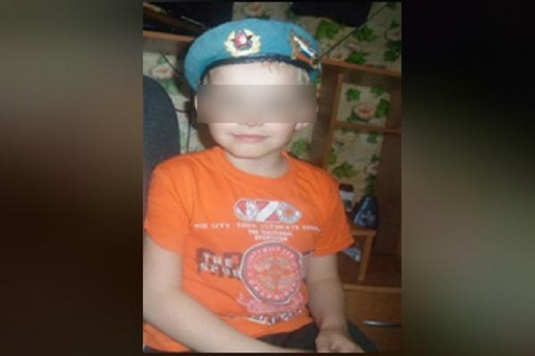 Следователи возбудили дело по статье «Убийство малолетнего»