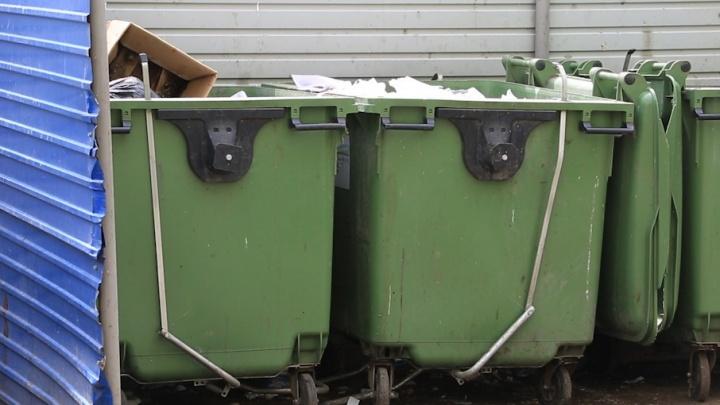 Миллионы на мусор: Южному Уралу подбросили денег на систему обращения с отходами