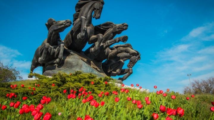 Каратисты, конек-горбунок, библиотекарь: какие народные прозвища получили донские памятники—часть 2