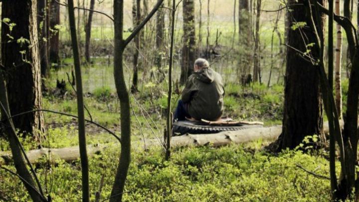 Ярославцев начнут штрафовать за костёр в лесу