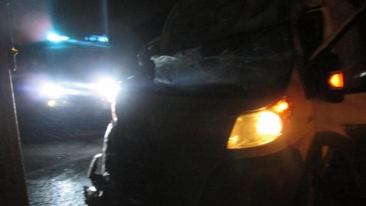 На трассе «Холмогоры» микроавтобус врезался в фуру: пострадал человек