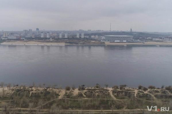 Волгоградской мошке не позволят сосать кровь иностранных болельщиков ЧМ-2018