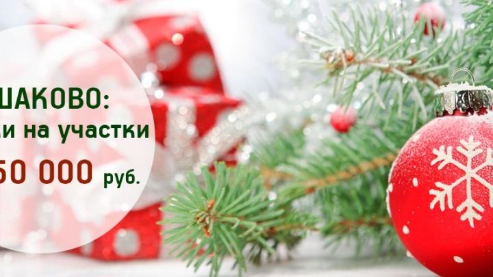 Новогодние скидки на участки в коттеджном поселке Ушаково: экономия до 150 тысяч рублей
