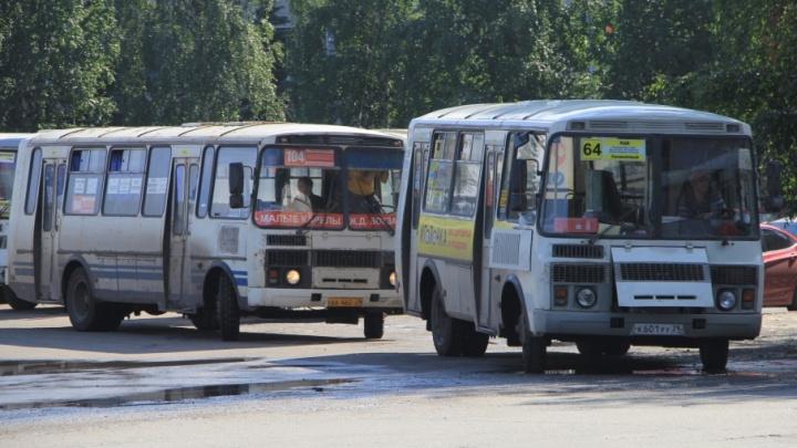 Архангельские навальнисты и коммунисты решили побороться за недорогой проезд в общественном транспорте