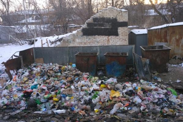 Жители поселка в Кировском районе так и не дождались уборки мусора