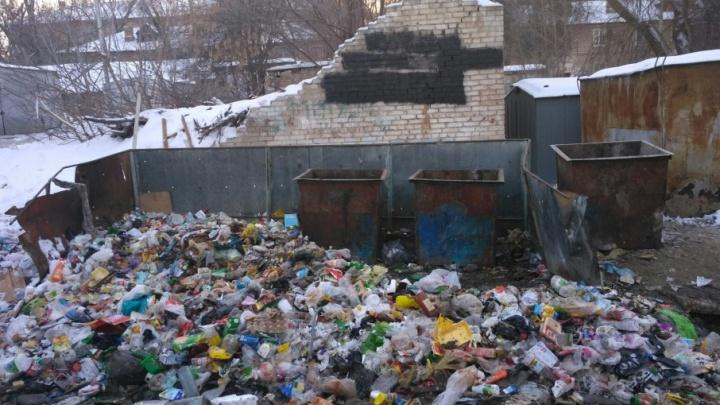 В Кировском районе Волгограда начали разгребать «оппозиционную» свалку