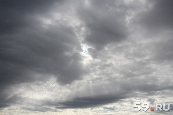 Всю предстоящую неделю будут идти дожди