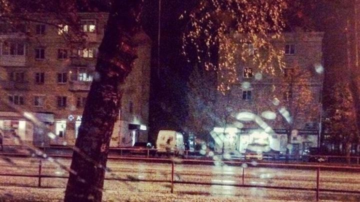 Жители Рыбинска увидели первый снег
