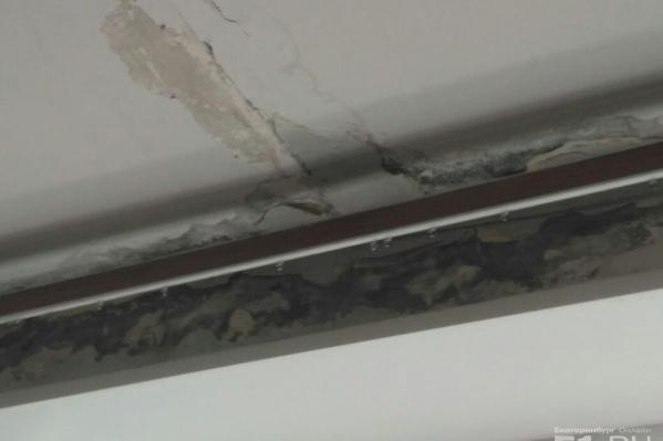 По словам родителей, класс топит уже давно, и стены там не успевают просыхать.