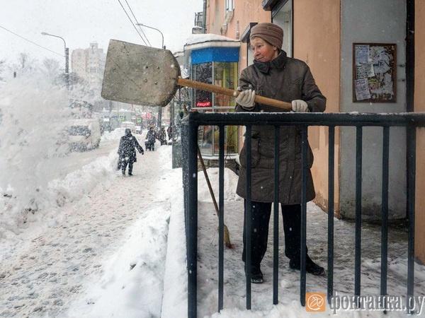 "фото: Михаил Огнев/""Фонтанка.ру"""