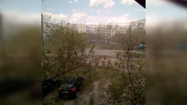 «Идёт то чёрный, то белый дым»: на Южном Урале возник пожар возле Ужовского бора