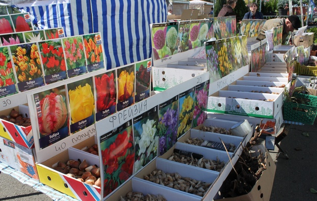 Старт садоводам: в «ДонЭкспоцентр» открылась выставка-ярмарка «Дачный сезон»
